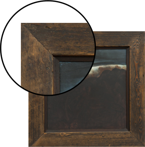 stain_frame_magnify